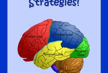 Brain based learning / by Joan Palmquist