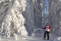 Snowshoeing & cross country skiing in EDEN places / Snowshoeing & cross country skiing in EDEN places / by Eden Europe