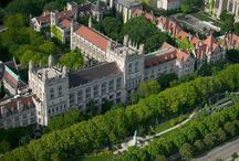 University / by Alexzandra Enger