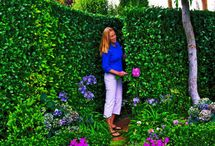 Garden / by Sue Erickson