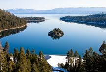 Winter Wonderland ~ South Lake Tahoe / Things to get out and do in Tahoe in the Winter! / by Avalon Lodge