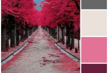 Color Interests / color combinations for inspiration / by Lori Tolliver