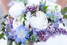 wedding / by Allison Ann Gusmus