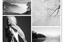 Photography Inspiration / by Anne Scherrer