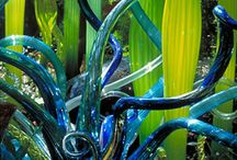 Chihuly. / by Andrea DeBergalis