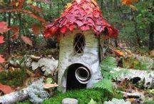 Garden / by Brandy Davis