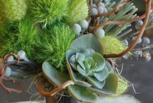 Everyday Inspiration / Everyday floral arrangements that inspire us! / by Owens Flower Shop