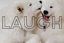 Laugh / by James Jeans