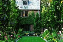 Landscaping ideas / by Pamela Morris