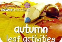 Educational: Nature Activities / by ecoMomical Me