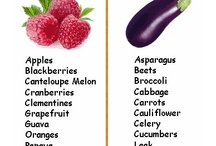 Negative Calorie Foods / Pins about Get healthy - negative calorie recipes, negative calorie food, good to know / by Maher Mashaal