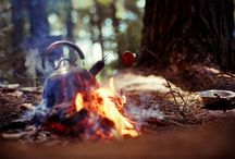 Into the Wild / Campgrounds, hikes, rivers, bonfires, and everything outdoors!  / by Sarah Clarke