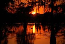 Louisiana the place I love! / by Charlene Miller