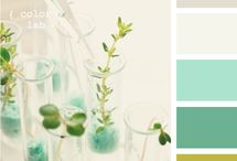 Colour Pinspiration / by Melissa @ Living Beautifully