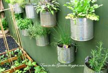 Upcycle Your Garden  / Nifty ideas for using upcycled and reclaimed materials in your garden. Lots of bright decorations and functional designs!  / by Community Forklift