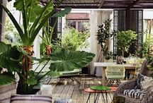 Outdoor Patio's  / by Donna Ashcraft-Mason