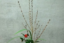Ikebana / by Esther Wise Mills