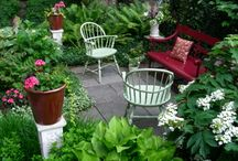 garden - yard / by Michelle Howard