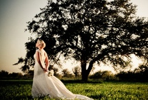 wedding / by Laura Rogers