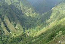 Hawaii  / by Mary Bruno