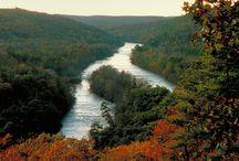 The Fabulous Flint River / by Flint RiverQuarium