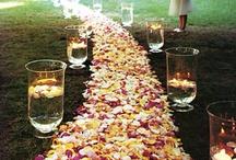 Weddings / by Rachel Smith