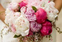 Flowers / by Stephanie Weast-Jordan