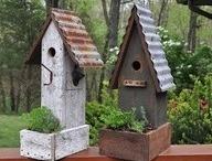 Birdhouses / by Vicki June
