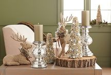 Winter Home Decor / by Target