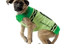 Pet Costumes / by FrightCatalog.com
