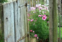 Rustic Country Garden / by Vicki Beckman