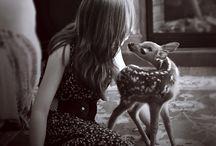 Deer / by Lindsay Storm