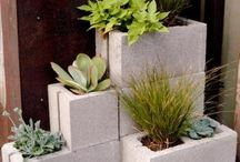 planters and plantings / by Shelly Sarver Designs