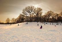Winter  / by Mel Myers
