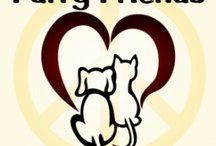 Rescues for Cats and Dogs / These are groups that I am familiar with or I trust because of friends. Let me know of yours thru Facebook. / by Jeanne Lander