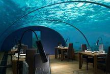 Maldives / by LoveTravel Places & ART