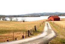 Barns / by Eileen Miller