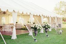 Wedding / by Inga Bērziņa