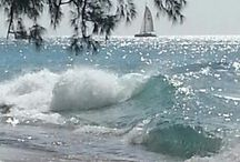 Ocean and beach in my soul / I love being near the ocean . I love the smell of the ocean and sea.  / by Gaynor