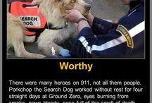 Heroism / by Elise @frugalfarmwife.com