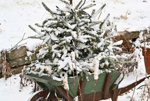 """~ """"It's Beginning To Look A Lot Like Christmas!""""~ / Christmas Decorations / by Elaina Valentin~Prinzivalli"""