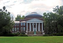 University of Louisville / by Connie Kidd