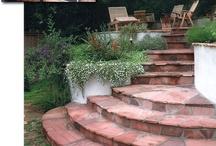 Backyard Ideas / by Shalena Smith
