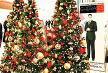 Holiday Decor / by Chris Hernandez