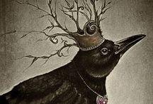 Birds / by Joyce Coolidge