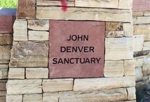 John Denver / by Brenda Veeder