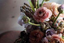 Floral arrangements / by Sarah Wynn