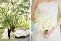 Odette's Wedding: Lemon & Lime / by Ruth Thomas