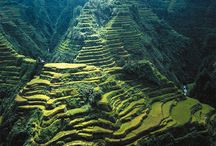 Travel: Asia / by Linda Chumbley