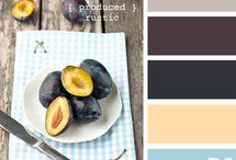 colors / by Amie Dahl-Muller